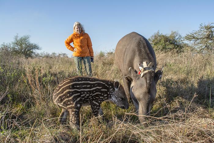 kris con tapir Arandu y Nena